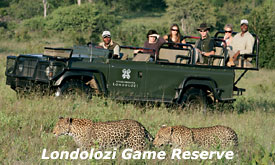 Kruger Park fly in Safaris, Londolozi Game Reserve