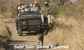 Kruger Park fly in Safaris,Sabi Sabi Game Reserve