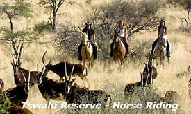 Wildlife and Safari Holiday