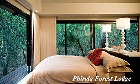Bedroom at Phinda Forest Lodge, Zululand, South Africa