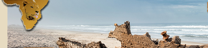 Ship Wreck on Skeleton Coast National Park