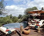 Makanyane Safari Lodge, pool